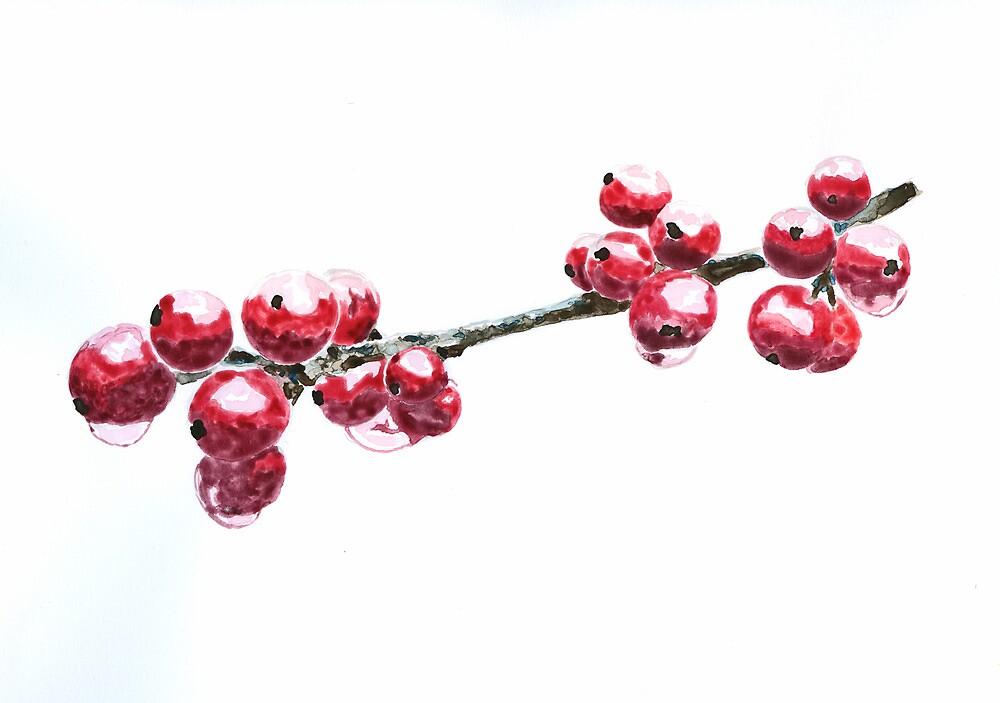 berries by ildiko