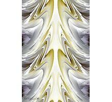 Nonstop Apple Blossom Abstract Photographic Print