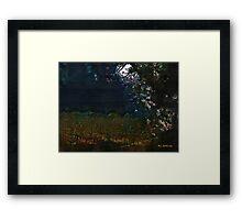 Blue Night in the Field Framed Print