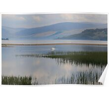 The Calm Waters of Loch Tay Poster