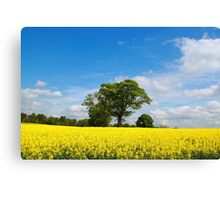 A Rural Setting Canvas Print