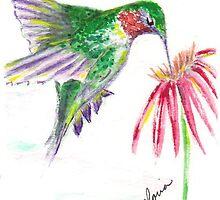 hummingbird by glorylane