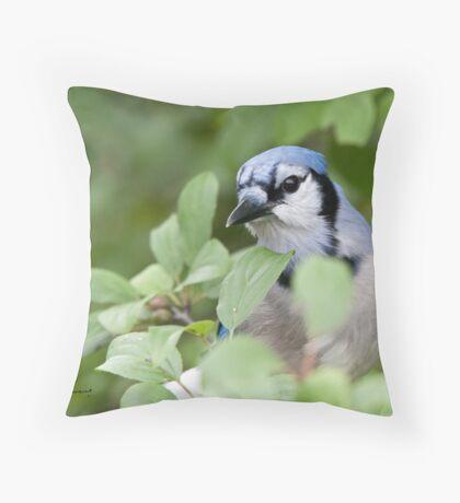 Peek Of Blue, I See U Throw Pillow
