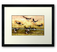 Touch-Down Framed Print