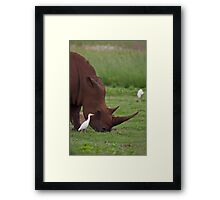 A last chance to see Framed Print