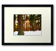 On a Winters Day   Framed Print