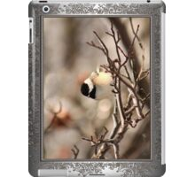Black-Capped Chickadee After the Ice Storm iPad Case/Skin