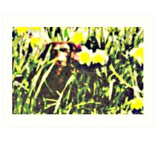 Dog in the Grass Art Print