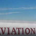 Aviation Sign At Airport by Lisa Diamond