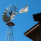 Windmill in San Luis Obispo, California by Lisa Diamond