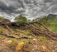 The Weak Will Fall - Glen Davis, Capertee Valley - The HDR Experience by Philip Johnson
