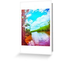 Colorful Everglades Greeting Card