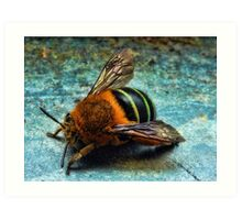 """Bumble Bee"" Art Print"