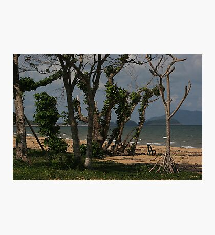 Trees at Tully Heads Photographic Print