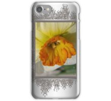 Small-Cupped Daffodil named Barrett Browning iPhone Case/Skin