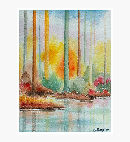 AUTUMN IN PASTEL COLORS - WATERCOLOR Photographic Print