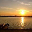 Estuary - Chincoteague Island Bay by dandefensor