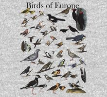 Birds of Europe Kids Clothes