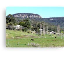 Farming near Ilford, N.S.W. Australia Canvas Print