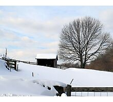 Wintery Day in New England Photographic Print