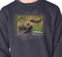 Lunch is Served to the Fourth Baby Barn Swallow Pullover