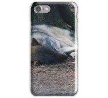 The Sleeping Wolf iPhone Case/Skin