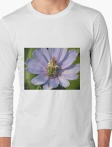 Green Metalic Bee and A Wee Friend on Chickory Flower Long Sleeve T-Shirt