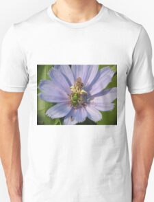 Green Metalic Bee and A Wee Friend on Chickory Flower T-Shirt