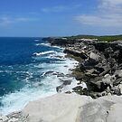 The Edge at Kurnell by Tina Wright