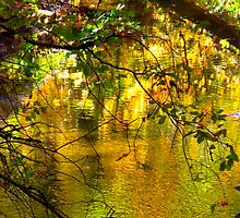 Undulating Autumn colours on the Don by MarianBendeth