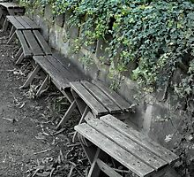 Have a seat, relax... by Rozita