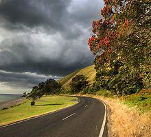 Coromandel Road by Michael Treloar