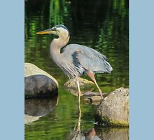 Blue Heron Reflections T-Shirt