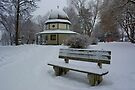 Snow On The Bench  by Gene Walls