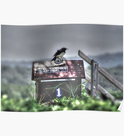 Bird on a Box Poster