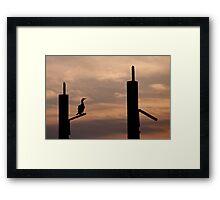 Waiting - Cormorant at sunrise Framed Print