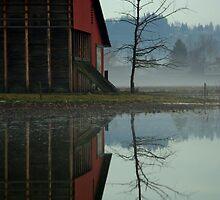 Reflective Farming by Sheri Bawtinheimer