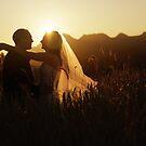 Wedding silhouettes by BlaizerB