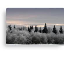 Winter sunrise in frost day  Canvas Print