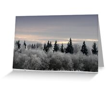Winter sunrise in frost day  Greeting Card