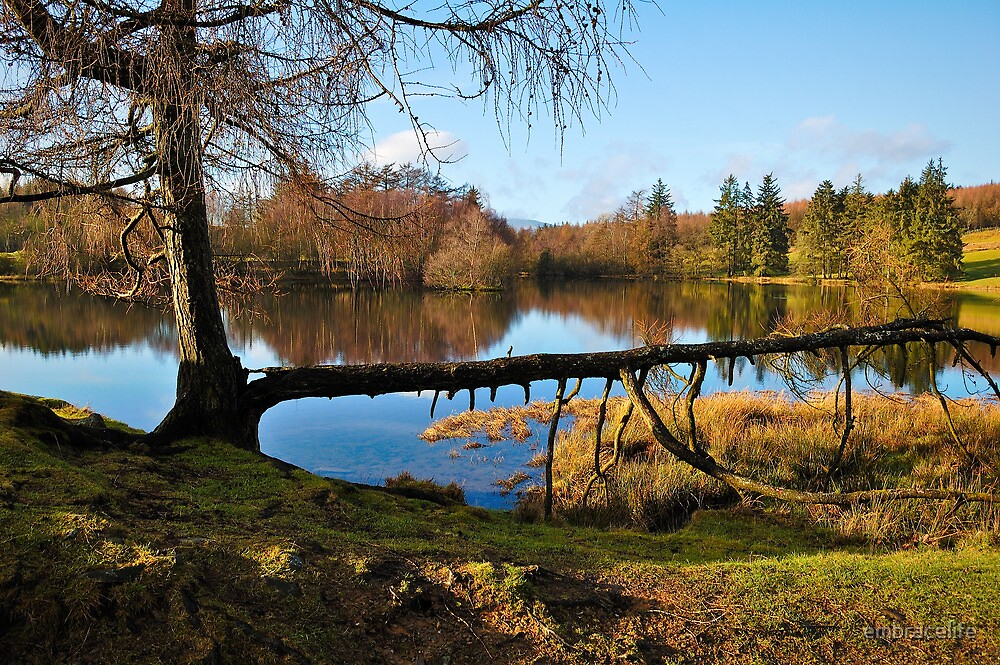 Moss Eccles Tarn, Cumbria by embracelife