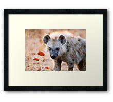 YEAH, I AM WATCHING YOU! - Spotted Hyaena - Crocuta crocuta Framed Print