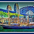 Sydney Harbour Bridge by Jason Scott