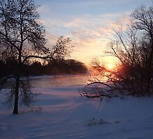Sunrise On The Trent River by Tracy Faught