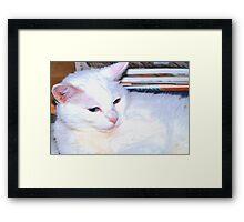 Office help Framed Print
