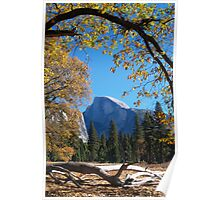 Framed view of Half Dome in Yosemite Poster