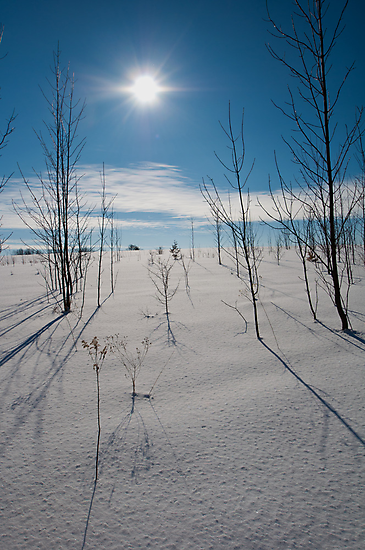 Warming Sun by GailDouglas