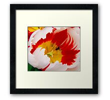 the necter theif Framed Print