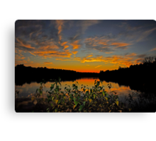 A Night of Color Canvas Print