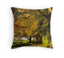 Rural Hampshire in late spring Throw Pillow